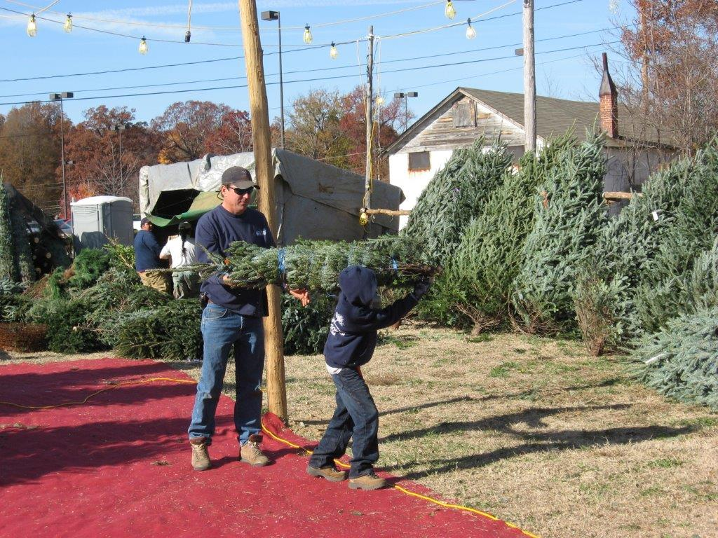 Bryans Christmas Trees Greensboro boy-at-lot