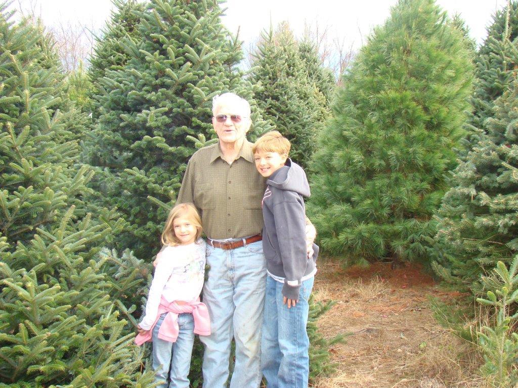 Carolina Fir Christmas Tree