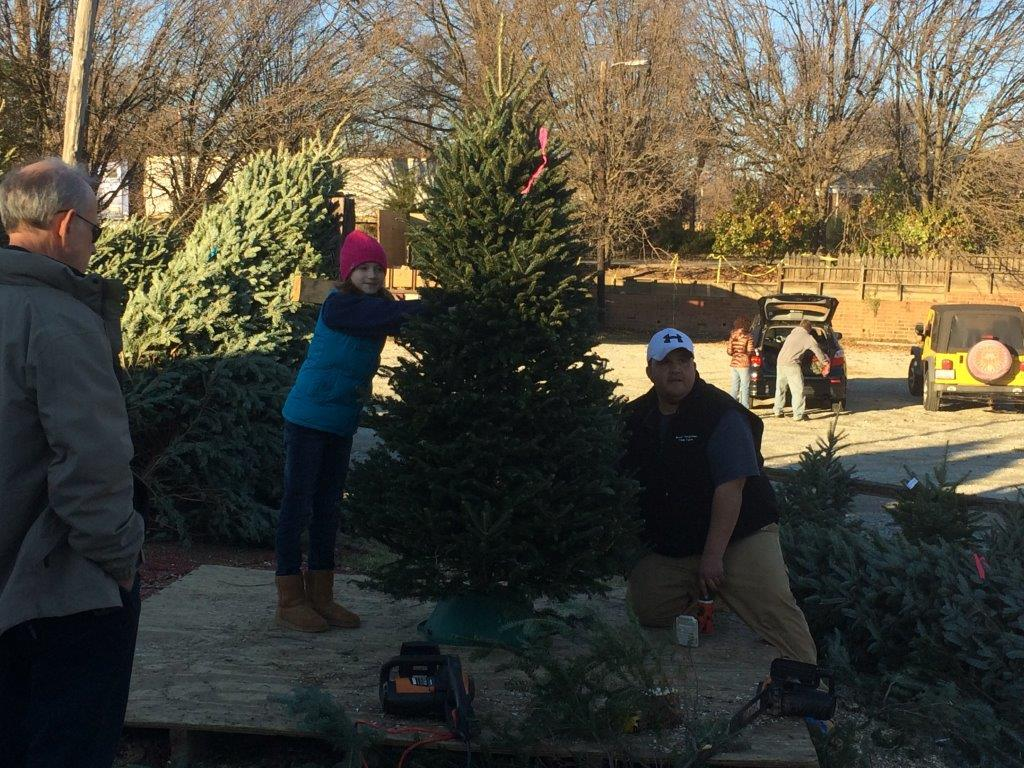 Bryans Christmas Trees Greensboro Lot 1